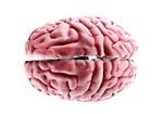 Церебральный арахноидит - лечение с помощью лечебной грязи