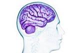 Открытые травмы головного мозга
